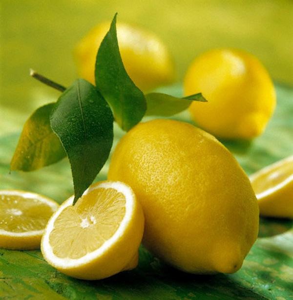 La primavera arrivata depuriamoci con il limone for Pianta di limone