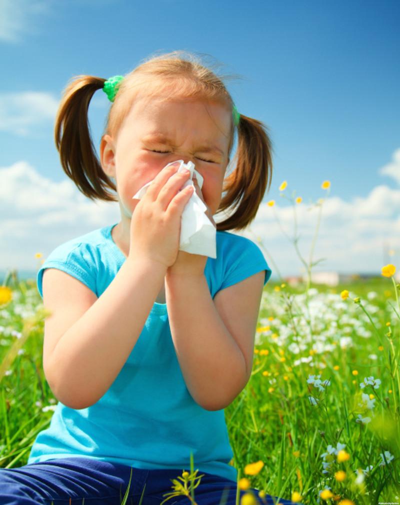 Rimedi Naturali per la Cura delle Allergie